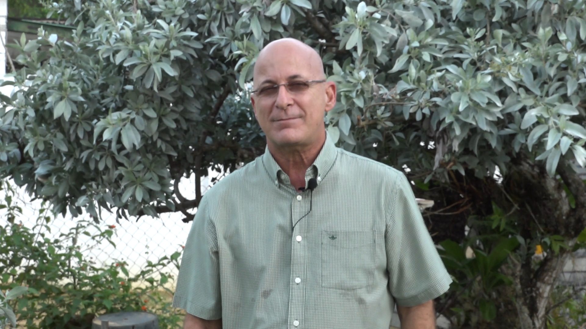 Jules Fernandes